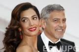 История любви Джорджа и Амаль Клуни: заядлый холостяк и строгий адвокат